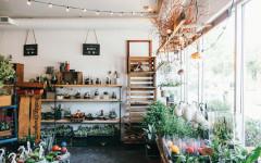 plant-terrariums-calgary