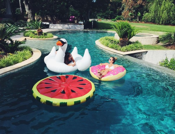 Swan donut watermelon pool floats